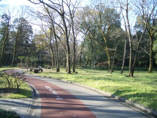 自転車道 群馬 自転車道 : 大槻峠~間瀬峠(陣見山)