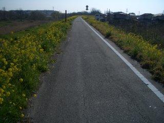 自転車道 高崎 自転車道 : 高崎伊勢崎自転車道